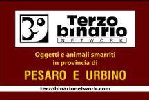 PESARO E URBINO / Oggetti e animali smarriti in provincia di Pesaro e Urbino