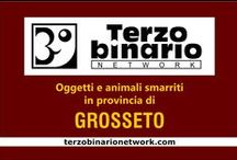 GROSSETO / Oggetti e animali smarriti in provincia di Grosseto