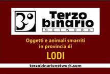 LODI / Oggetti e animali smarriti in provincia di Lodi