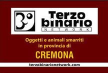 CREMONA / Oggetti e animali smarriti in provincia di Cremona