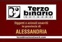 ALESSANDRIA / Oggetti e animali smarriti in provincia di Alessandria