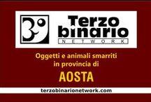 AOSTA / Oggetti e animali smarriti in provincia di Aosta