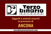 ANCONA / Oggetti e animali smarriti in provincia di Ancona