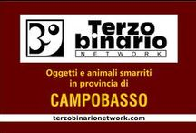CAMPOBASSO / Oggetti e animali smarriti in provincia di Campobasso