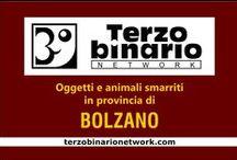 BOLZANO / Oggetti e animali smarriti in provincia di Bolzano