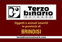 BRINDISI / Oggetti e animali smarriti in provincia di Brindisi