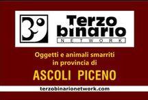 ASCOLI PICENO / Oggetti e animali smarriti in provincia di Ascoli Piceno