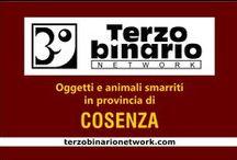 COSENZA / Oggetti e animali smarriti in provincia di Cosenza