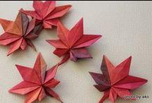 Origami / Papiroflexia