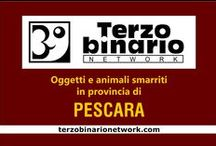 PESCARA / Oggetti e animali smarriti in provincia di Pescara