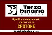 CROTONE / Oggetti e animali smarriti in provincia di Crotone