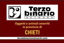 CHIETI / Oggetti e animali smarriti in provincia di Chieti