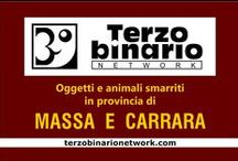 MASSA E CARRARA / Oggetti e animali smarriti in provincia di Massa e Carrara