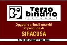 SIRACUSA / Oggetti e animali smarriti in provincia di Siracusa