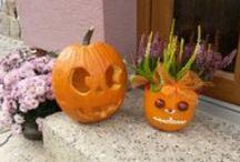 Podzim / podzimní tvoření a dekorace