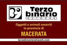 MACERATA / Oggetti e animali smarriti in provincia di Macerata