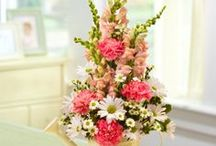 Mother's Day Ideas / Mother's Day Ideas, Activities, Gifts & Crafts. Make this Mother's Day one to remember with these gift ideas, supplies, catering ideas and other Mother's's Day activities.