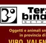 VIBO VALENTIA / Oggetti e animali smarriti in provincia di Vibo Valentia