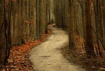 """Follow your own path... / """"...Life's a journey, not a destination!"""" / by Terri Jewett"""
