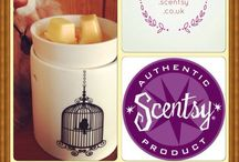 Scentsy / Flameless Fragrance