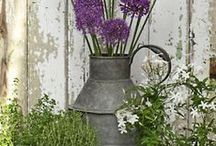 Gardening with Container
