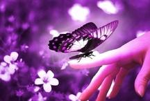 Couleur ViOLeT/ PuRpLE / Le violet symbolise la pureté, la spiritualité, le mysticisme, l'introspection, la méditation. Cependant, elle évoque également la tristesse, la mélancolie et la solitude. Cette couleur a une forte action sur l'émotivité et peut combattre les émotions violentes tels que les angoisses, les peurs et la colère. Couleur du 7ème chakra.