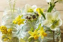 Spring & Easter / Készülj velünk a legváltozatosabb évszakra, a tavaszra!