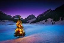 Winter / Views from the winter wonderland