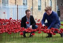 Ceramic Poppies at Tower of London / Tower of London 2014, to commemorate the 100th anniversary of the start of the First World War by Ceramic Artist Paul Cummins & designer Tom Piper.  888,246 poppies represent the fallen. http://www.paulcumminsceramics.com/  http://poppies.hrp.org.uk/. #poppiestour