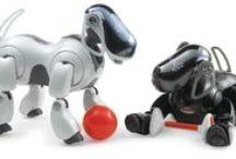 Robot Pets