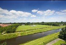 Locatie Vrij Spel / Een droomplek; toplocatie tussen groen en water in 's-Hertogenbosch