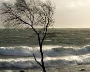 storm&wind