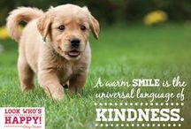 Happy Dog Moments / Words & moments we live by. Dogs make us smile everyday, they bring so much joy to our lives.