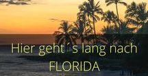 Florida / Tipps, Routen, Strände, Walt Disney World. Alles rund um Florida. USA Reisen