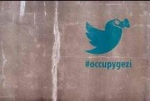 #direnGaGa / Gezi Parkı'nın direnen kuşları...