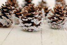Pinecone Crafts / Pinecone Crafts | DIY Pinecone Ideas