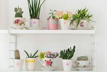 CUTE HOME DECOR IDEAS / Cute planters, organization tips or just whimsical decorations to inspire you to create a happier life.