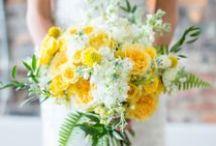 Weddings - Sunshine, Daisies, Butter Mellow