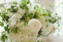 Weddings - Green