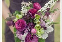 Weddings - Purple