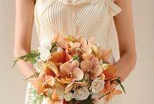 Weddings - Orange
