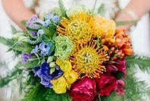 Weddings - Rainbow
