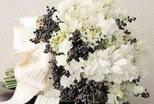 Weddings - Black