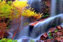 Nature spectacles / I'm fascinated by the nature <3