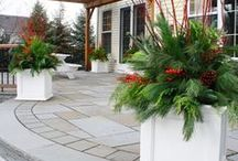 Winter Gardening and Decorating