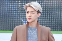 Sehun / Oh Sehun, simply known as Sehun is a South Korean singer, dancer, and actor. He is a member of the South Korean-Chinese boy group EXO and its sub-group EXO-K