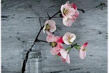 Blumen / Hochzeit/ Blumen/ Brautstrauss