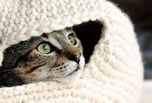 Кnitting