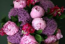 * i love flowers *