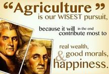 Agriculture / by Cattle Empire